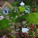 Sample Fairy Garden with rocks and trees