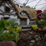 Sample Garden with thatched roof house
