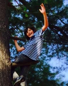 Jackson in a tree